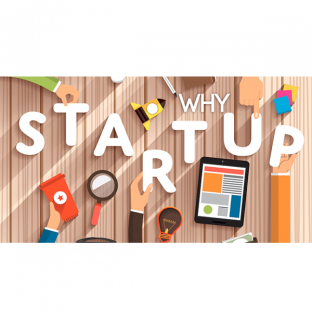 Why Startup?